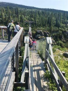 Yukon Suspension Bridge (Medium)