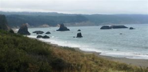 Pacfic Coast in Oregon 2 (Medium)