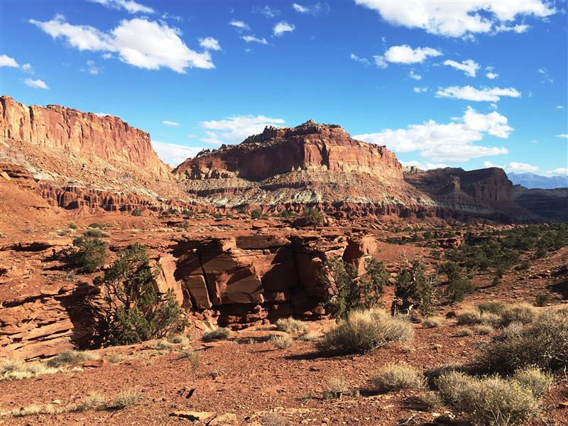 Capitol Reef (Medium)